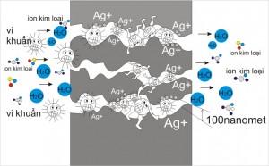 nano carbon(1)