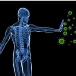 Vai trò của canxi với hệ miễn dịch