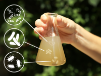 Nước sinh hoạt không sạch gây bệnh tật cho cơ thể