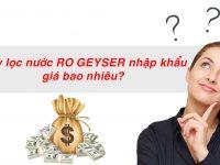 Giá của máy lọc nước RO Geyser nhập khẩu nguyên chiếc