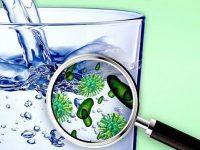 Máy lọc nước uống tại vòi cần loại bỏ các chất độc hại trong nước
